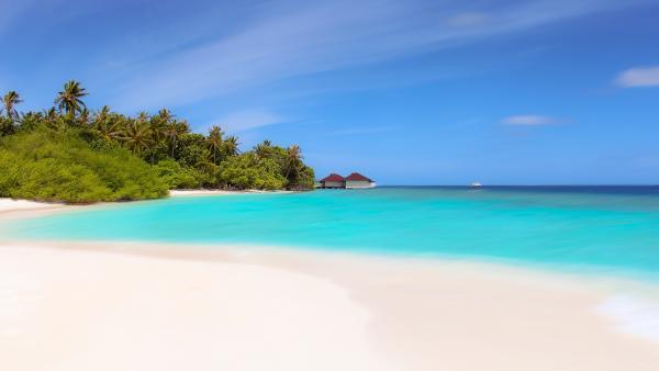 beach 2711264